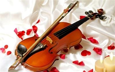 Giá các loại đàn violin bán chạy tại Tphcm