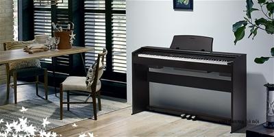 Top 5 model đàn piano điện chuyên nghiệp