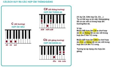 14 hợp âm cơ bản và đủ dùng trên piano
