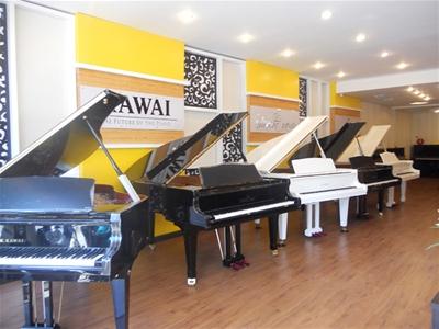 Thị trường đàn piano hiện nay tại Việt Nam như thế nào?