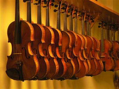 Cửa hàng bán đàn violin tại quận Bình Thạnh