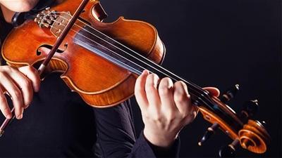 Cách phân biệt kích thước của đàn violin