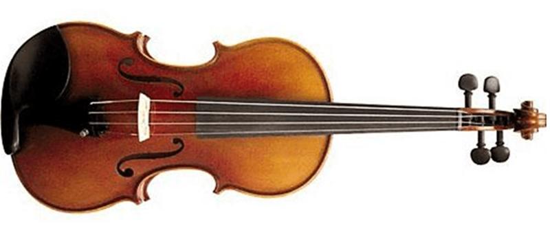 Đàn violin dành cho người chơi chuyên nghiệp