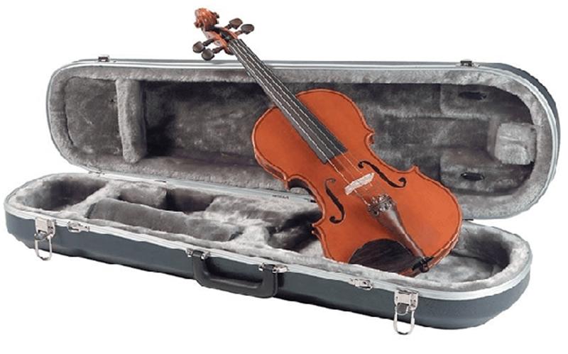 Đàn violin dành cho người đã biết chơi