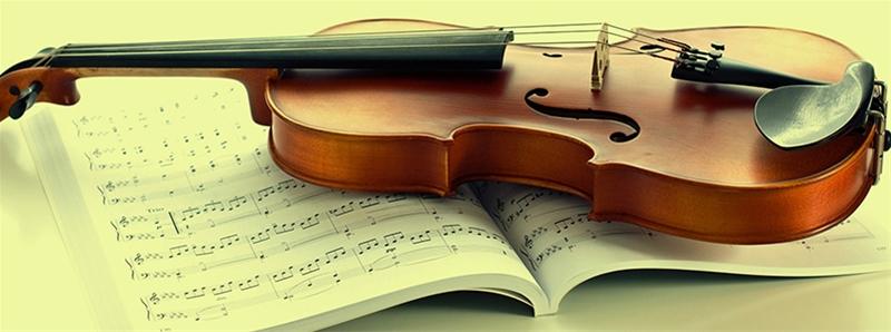 size đàn violin