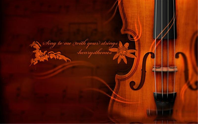 Chọn mua đàn violin cho người mới học