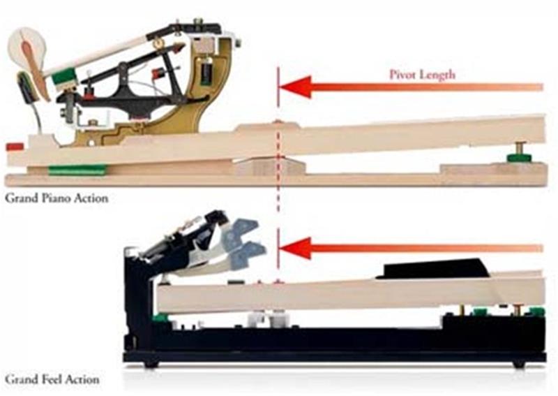 Hình ảnh so sánh bộ cơ piano cơ truyền thống và piano điện