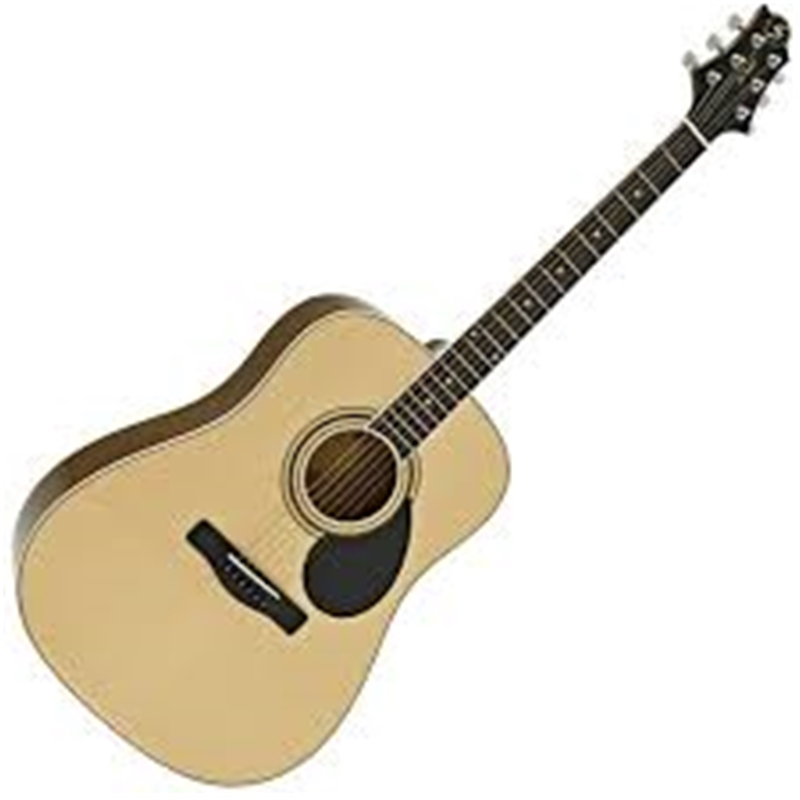 Đàn guitar Greg Bennet GD-101S