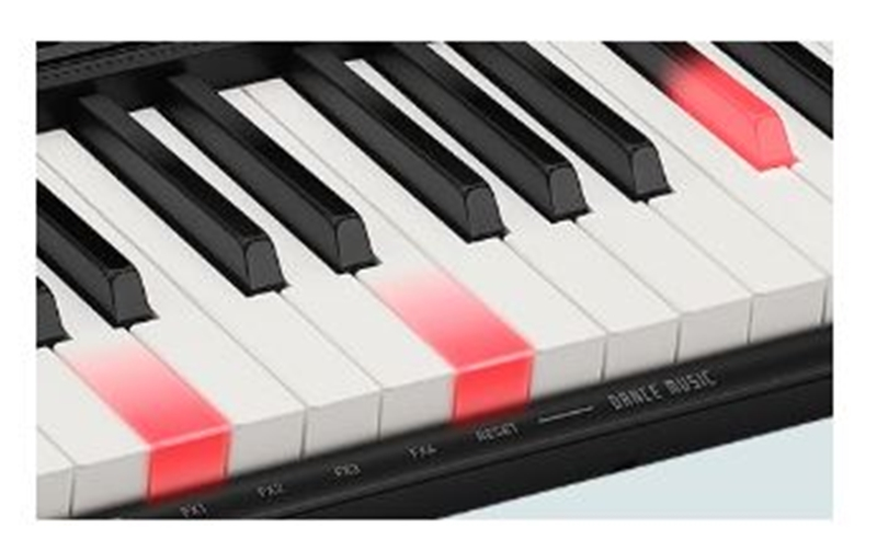 organ phím sáng casio lk-s250