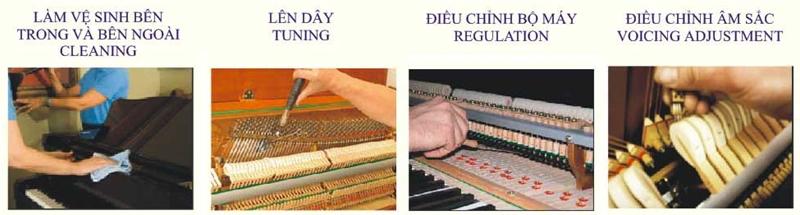 bào hành piano