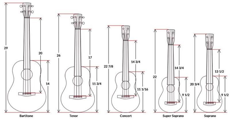kích thước đàn guitar nhỏ