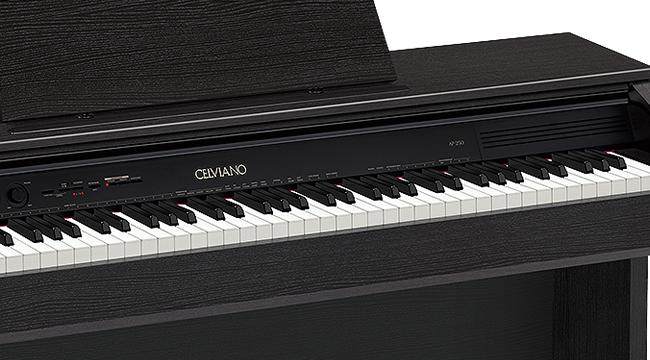 Casio AP-250
