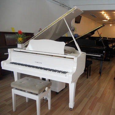 grand piano yamaha c3