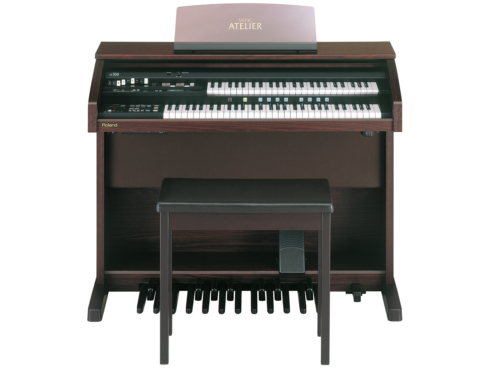 Roland AT-300