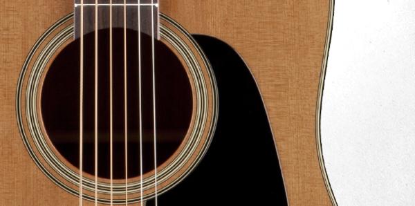 Đàn guitar Takamine P1DC