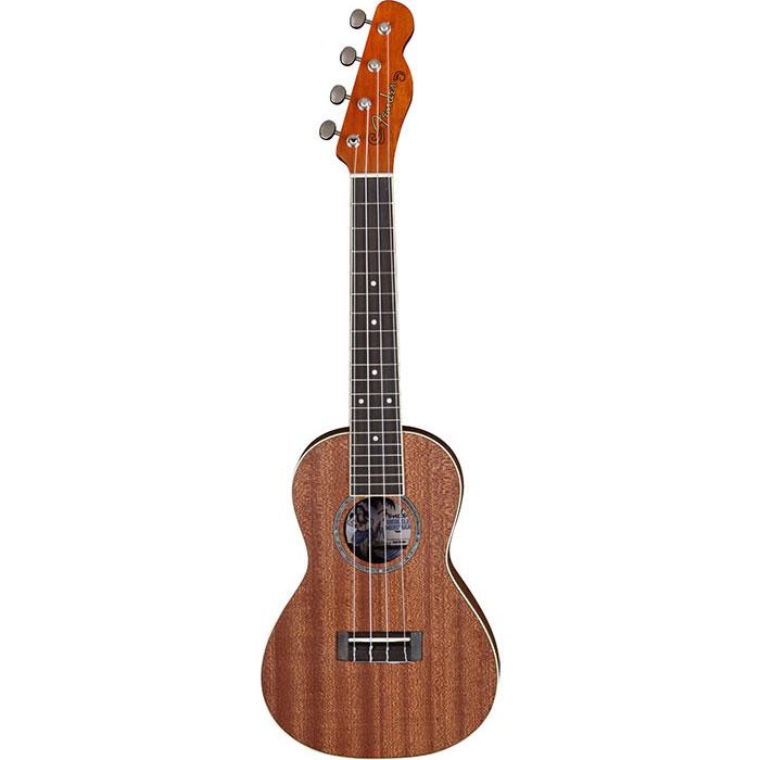 Fender Mino