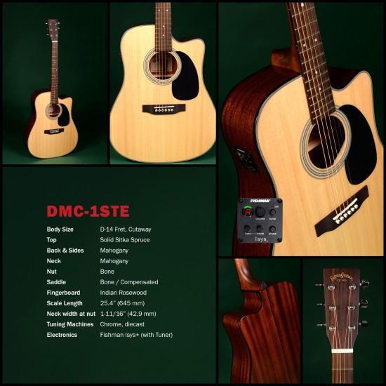 Sigma DMC-1STE